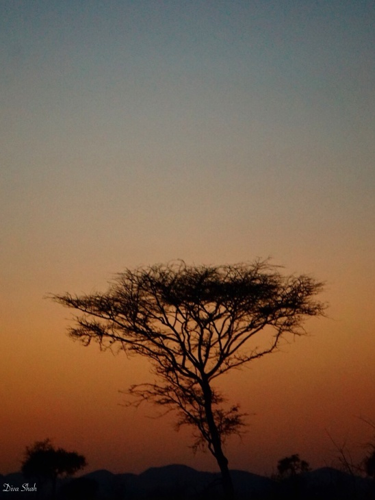 Another shot of the last sunset we saw in Meru