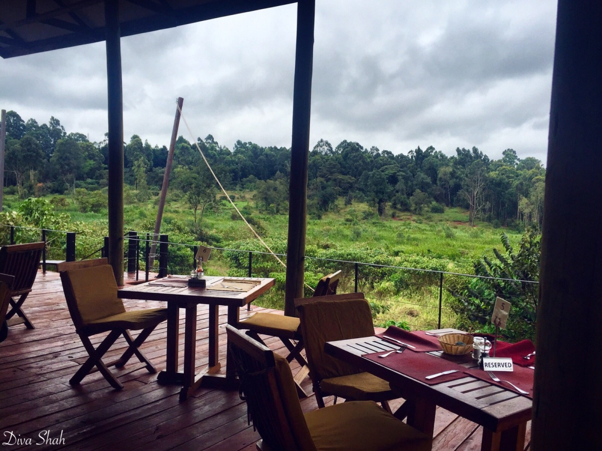 Eating Close To Nature The River Cafe Experience